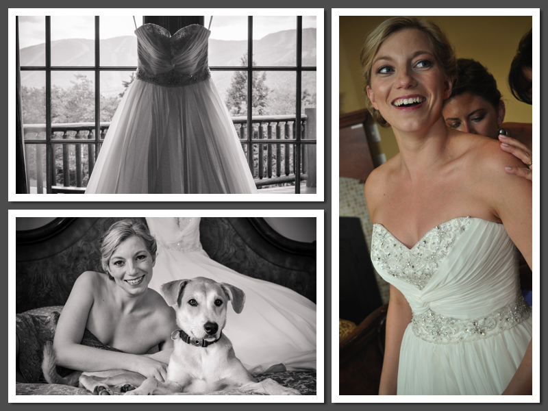 JS wedding dress collage