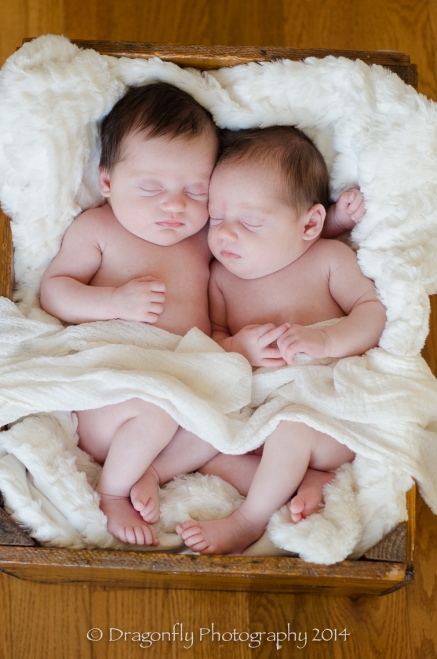 Newbornjosiegracesmlogo-1006