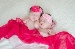 Newbornjosiegracesmlogo-1011