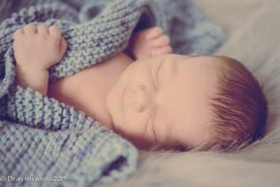 baby M (114 of 19)